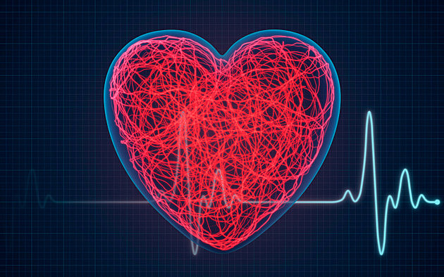 Heart alive