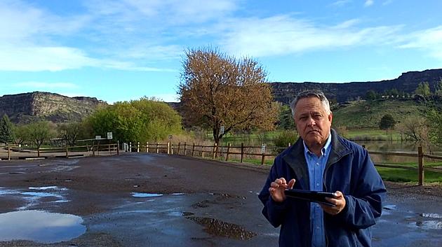 Charles Mitchell via Vimeo
